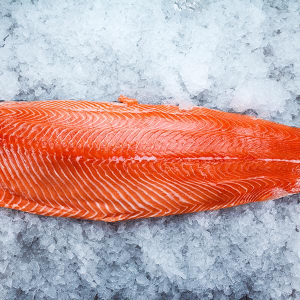 Fresh NZ King Salmon (Fillet Slab)