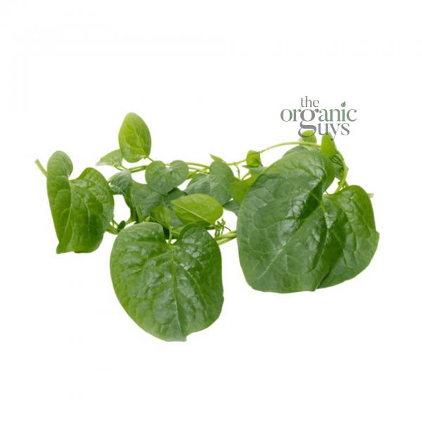 Ceylon Spinach